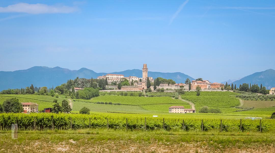 Prosecco Region