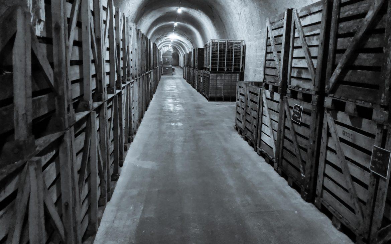 1,9 km Keller bei Gosset Champagner in Epernay