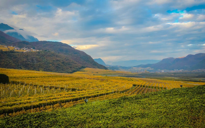 Blick auf die Weinberge und Berge in Meran, Südtirol.